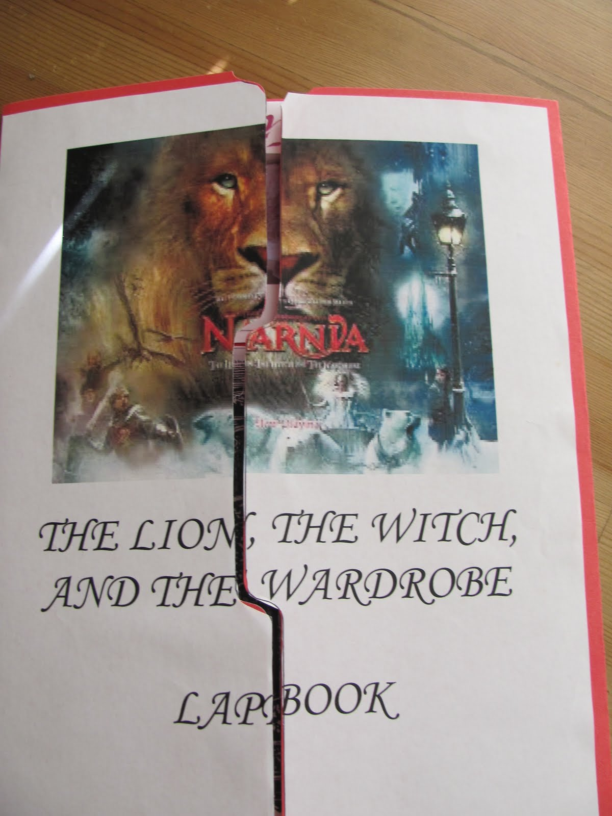 book report lion witch and wardrobe Everything you need to use cs lewis's award winning fantasy novel, the lion, the witch and the wardrobe effectively in your classroom a no-prep standards based interactive notebook literature guide with follow-up reading response questions for every chapter.