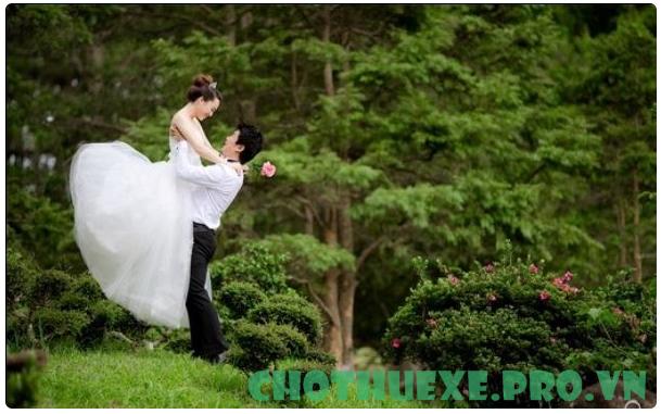 Những địa chỉ chụp ảnh cưới tại Đà Lạt