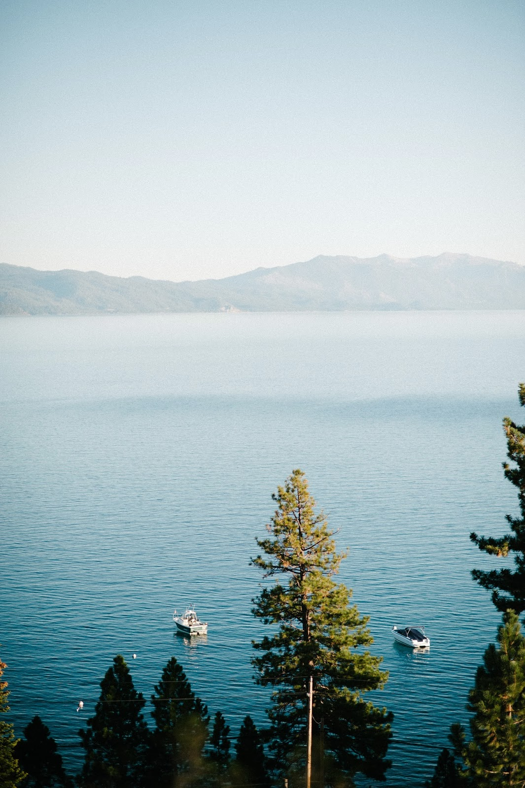 View of Lake Tahoe from Fitzhaven Wedding Venue // Acres of Hope Photography // Take the Cake Event Planning