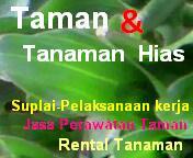 INFO TAMAN & TANAMAN HIAS