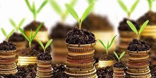 Macam Jenis Investasi Paling Menguntungkan Tahun Ini