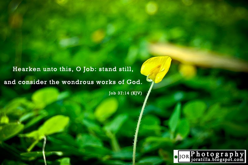 Great Wondrous Works Of God Bible Quotes Job 37:14