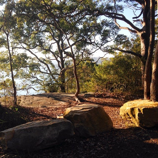 Spring Sunshine in Oatley Park