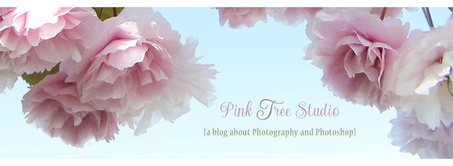 Pink Tree Studio