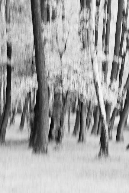Koncepcyjna fotografia krajobrazu. Zdzieszowicka impresja. fot. Łukasz Cyrus, Ruda Śląska