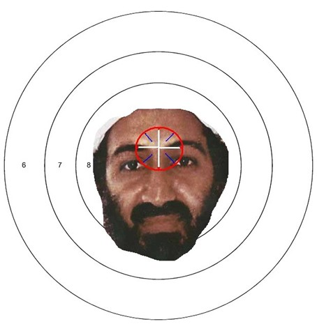 Empty Nest Evolution: U.S. Operation Kills Bin Laden Osama Bin Laden Targets For Shooting