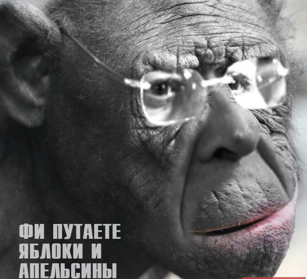 Могерини указала Лаврову на необходимость выполнения Минских договоренностей - Цензор.НЕТ 7352