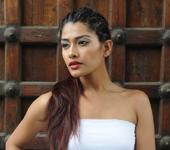 Arjita Roy Kingfisher Calendar Girl Hunt 2012 Contestant
