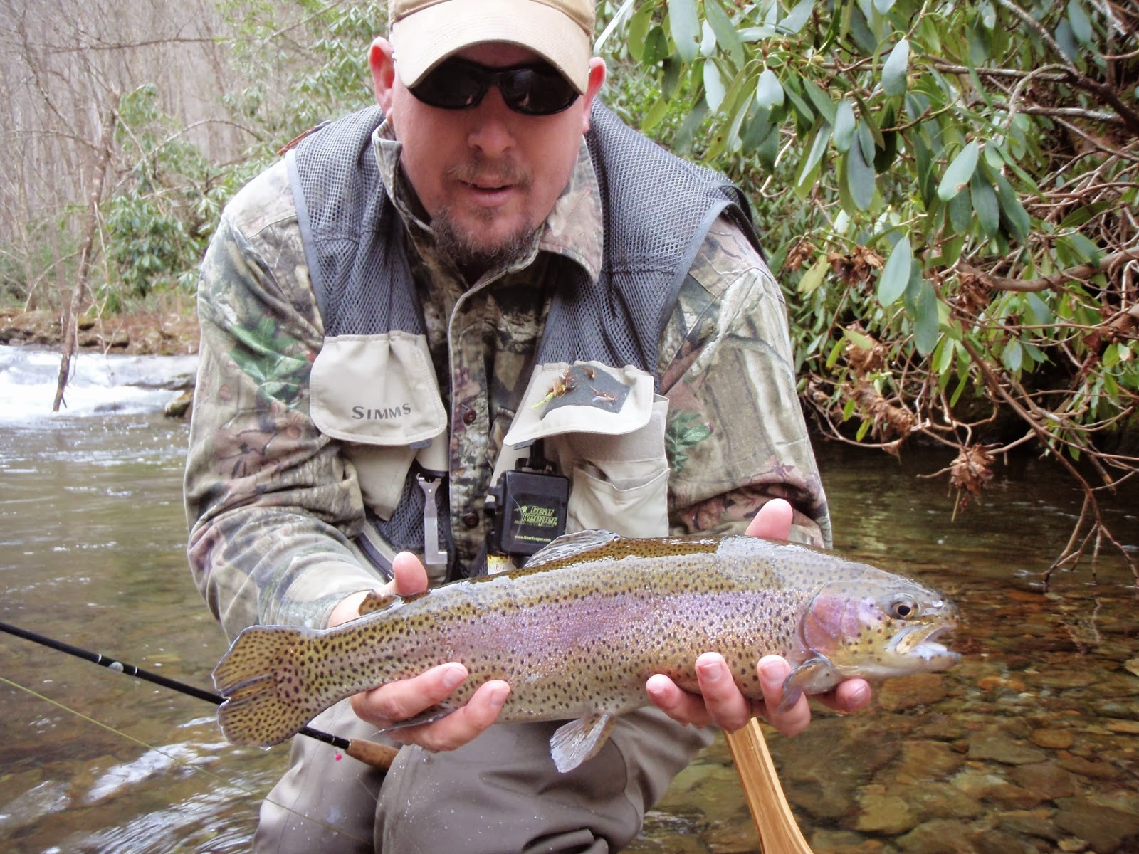 Delayed Harvest Fishing on Big Snowbird Creek
