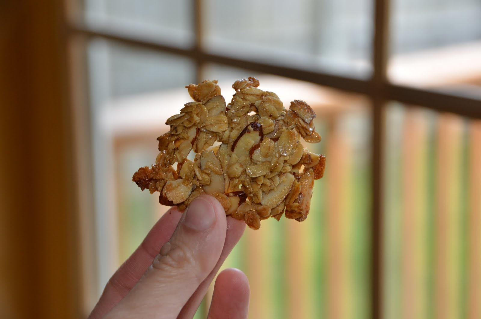 oatmeal-almond+crisps+%2810%29.JPG