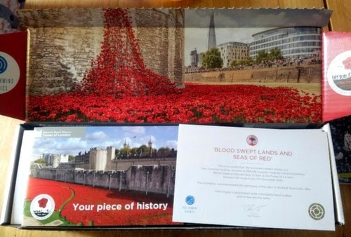 Rocking My World Friday - Tower of London Poppy