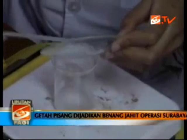 Benang Jahit Operasi Menggunakan Getah Pisang