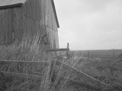 [ old barn out on the tantramar ]