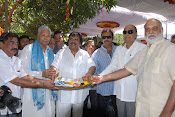 Vaddikasulavadu Movie opening Event Photos Gallery-thumbnail-1