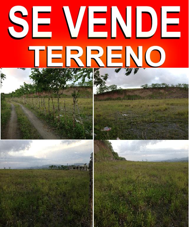 EN LA GINA HUECA, DM DE TAVERA:VENDO TERRENO
