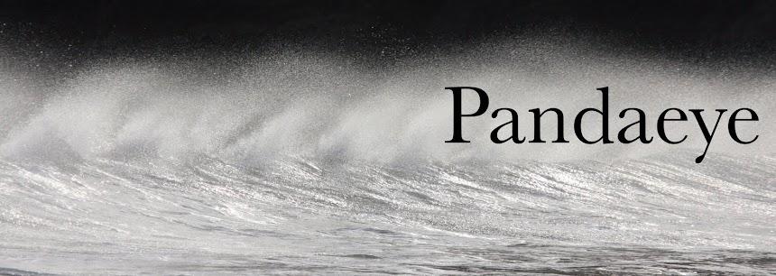 _Pandaeye_