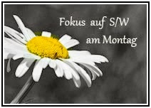 Fokus auf S/W am Montag