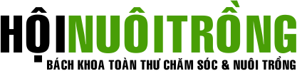 Hội Nuôi Trồng - Chia sẻ kỹ thuật chăn nuôi & trồng trọt