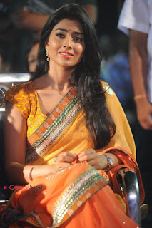 Shreya Saran Latest Pictures in Saree at Pavitra Movie Audio Launch  0009
