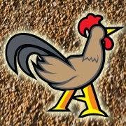 Penternakan Ayam Kampung