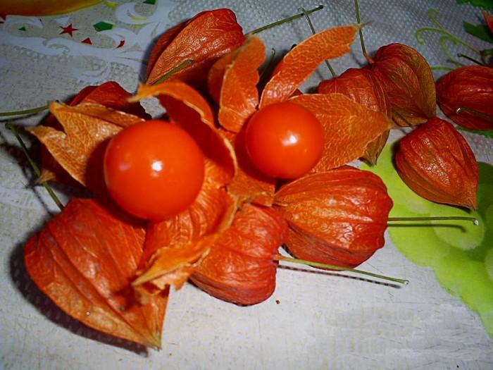 Мексиканские салаты фотоы