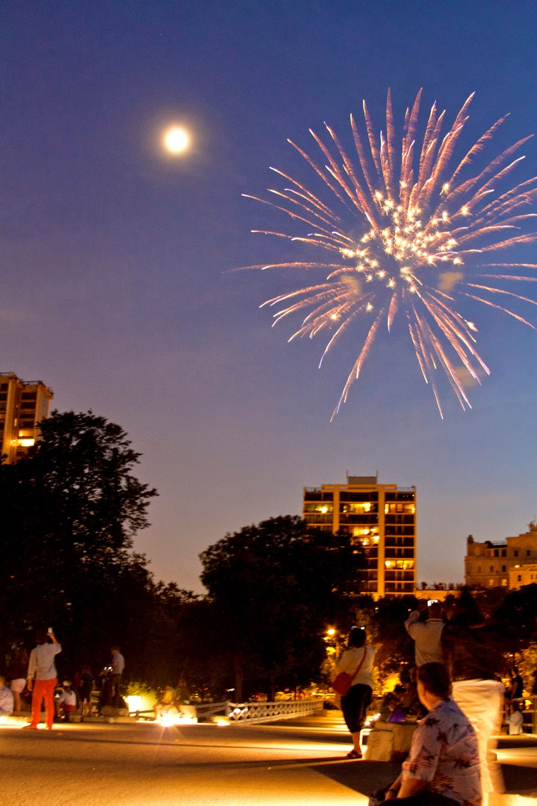 Chicago fireworks from Lincoln Park 2014. Photo by Tammy Sue Allen Photography.