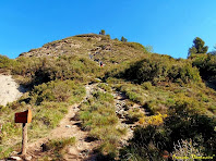 """Un dels molts accessos per pujar al cim del Turó de la Creu de Gurb. Aquest es troba en el punt on hi ha el rètol de fusta el castell/camí dels 6 pins. Autor: Francesc """"Caminaire"""""""