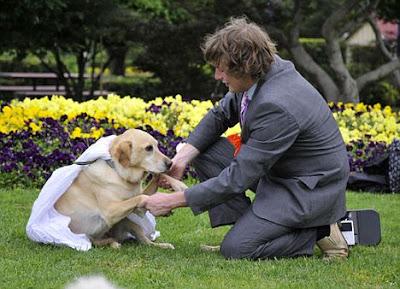 7 Pernikahan Teraneh Manusia Dengan Hewan
