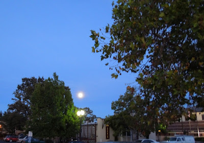 Moon Over Downtown Paso Robles, August 28