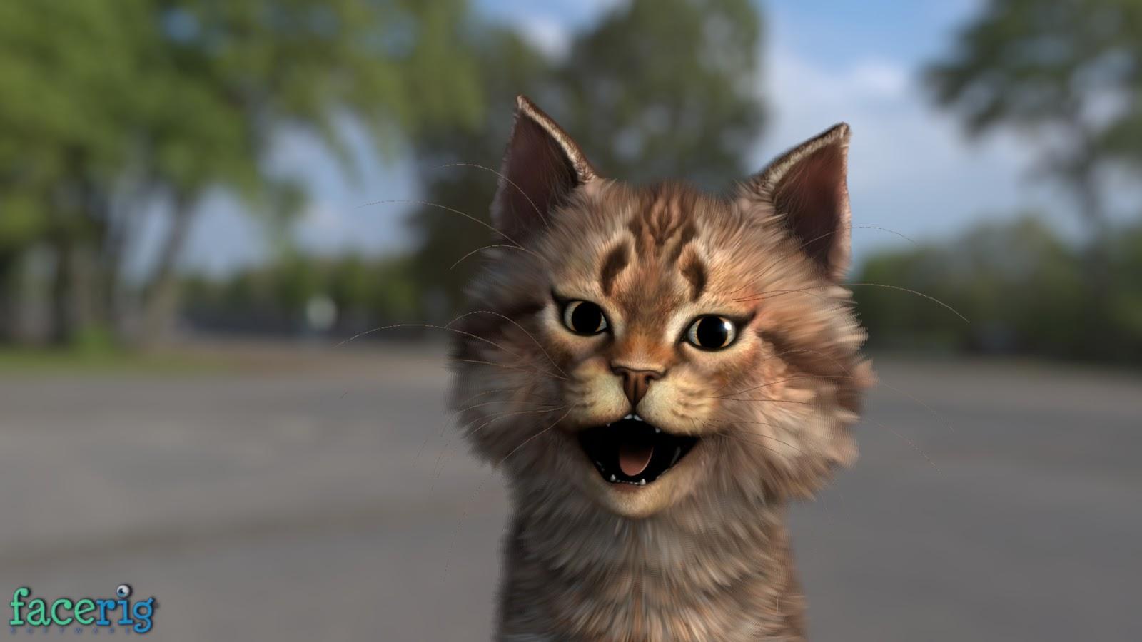risen saber kitten