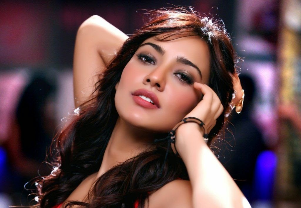 Indians Actress Neha Sharma Wallpapersfree Download Wallpapers Indian Celebrities