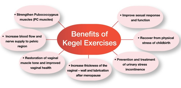 Pelvic Floor Muscles Will Naturally Weaken Due To Aging, Childbirth And  Pregnancy, Lack Of Exercise, And Menopause. Kegel Exercise Can Strengthens  Our ...