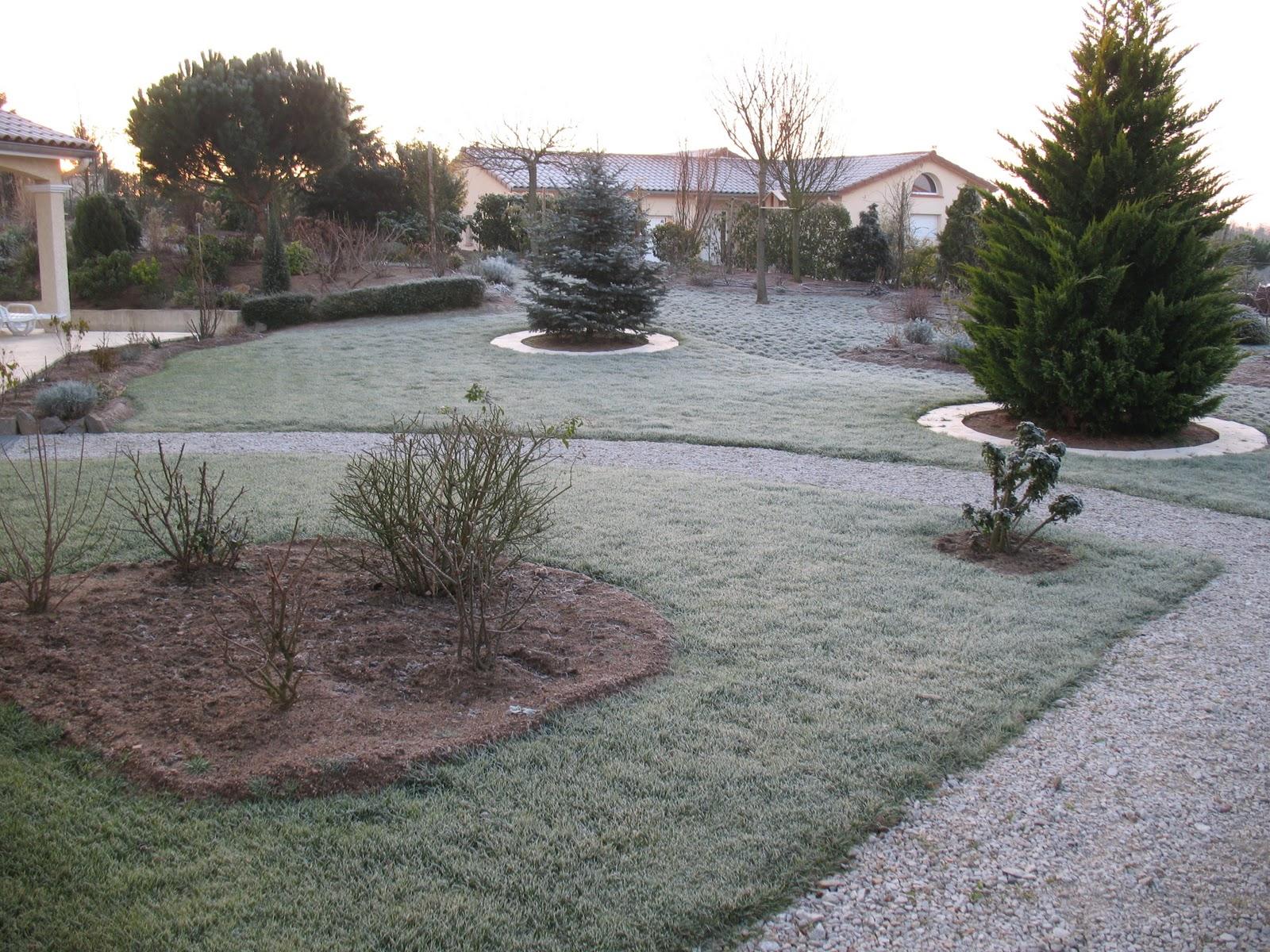 Roses du jardin ch neland le jardin en janvier - Jardin de chen ...