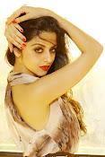 Vedhika glamorous photos gallery-thumbnail-11