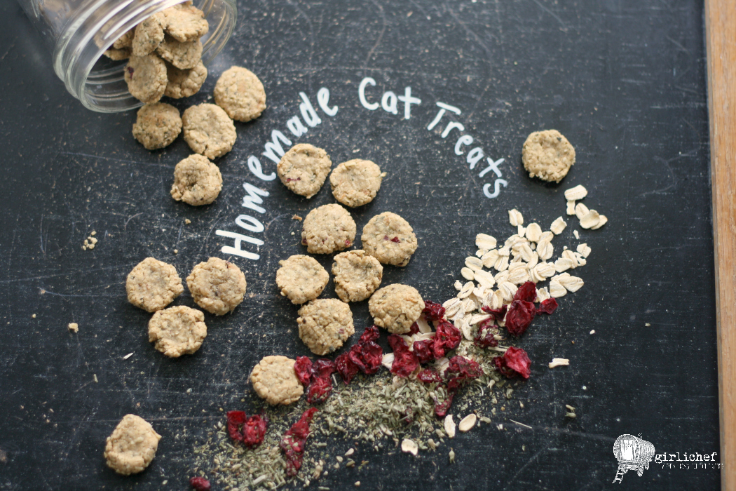 Homemade chicken cranberry cat treats all roads lead to the kitchen homemade chicken cranberry cat treats forumfinder Choice Image