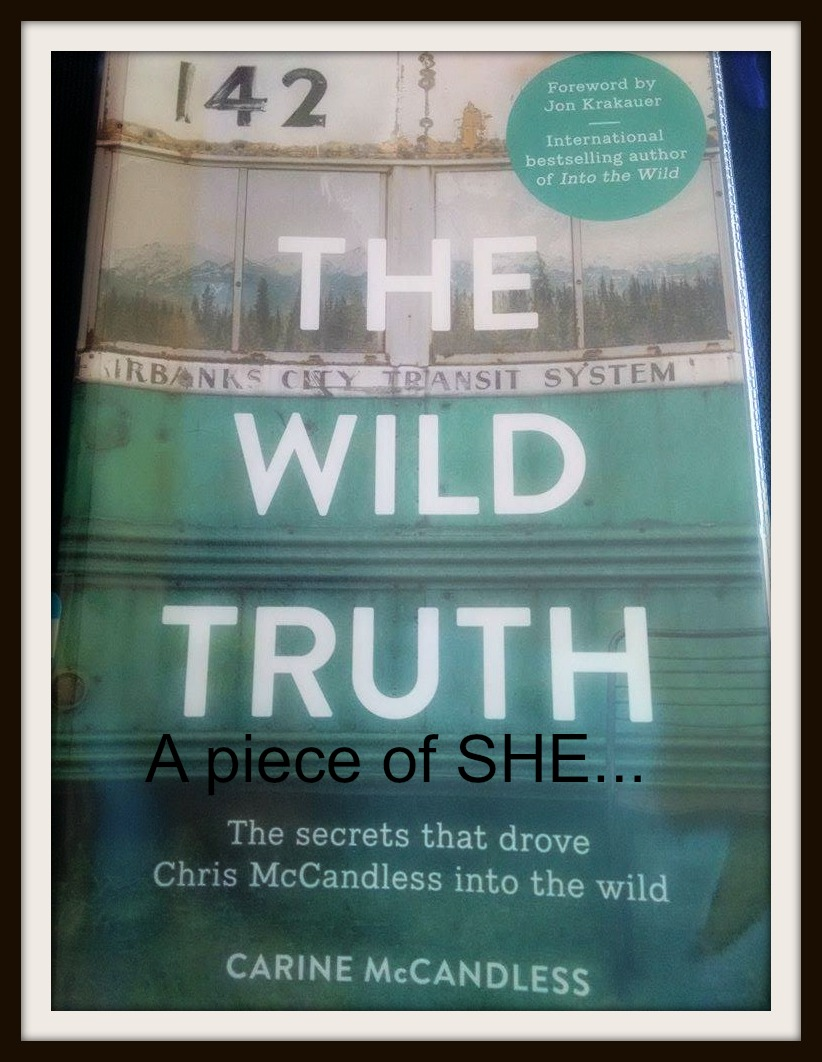 a character analysis of chris mccandless from into the wild by jon krakauer Into the wild essays - the character of chris mccandless in jon krakauer's, into the wild.