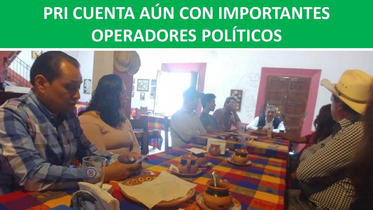 IMPORTANTES OPERADORES POLÍTICOS