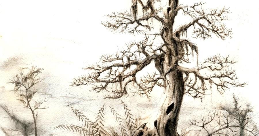 Test Kresby Stromu