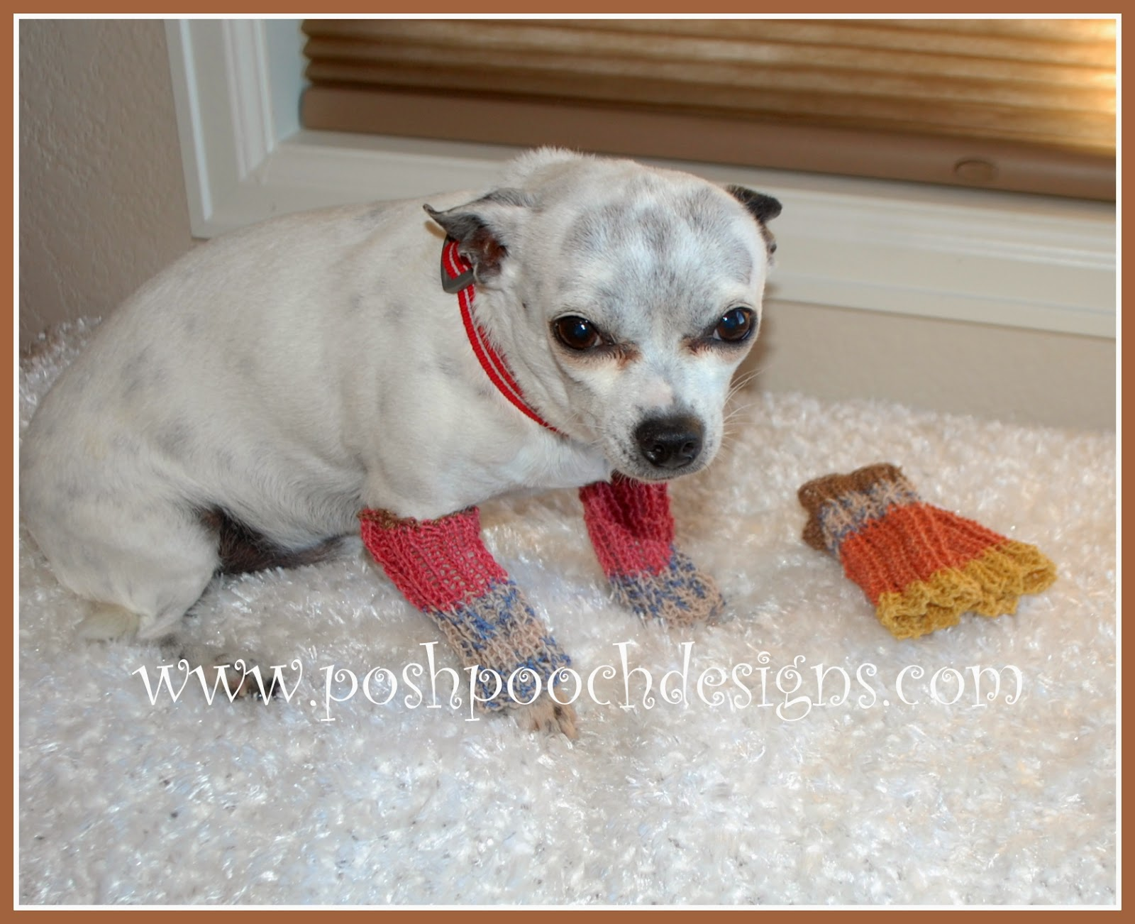 Posh pooch designs dog clothes free knitting patterns leg warmers for dogs 3 sizes bankloansurffo Image collections