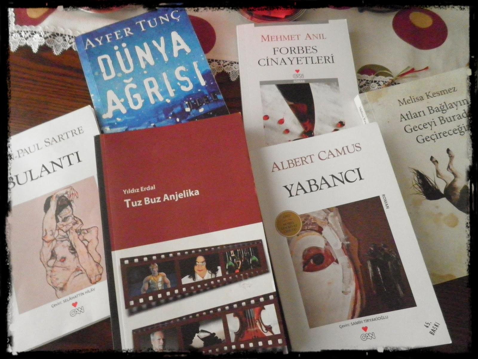 subat kitaplari 1