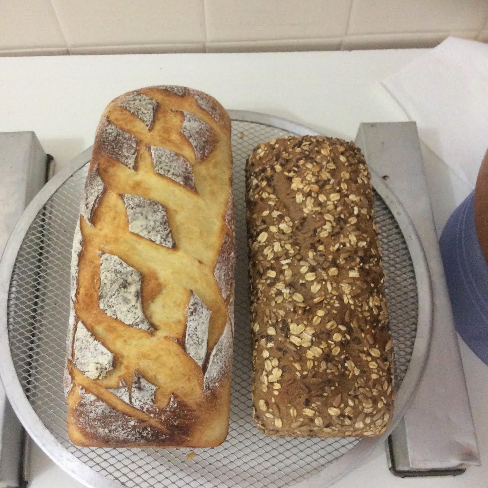 Pães: caseiro e multigrãos