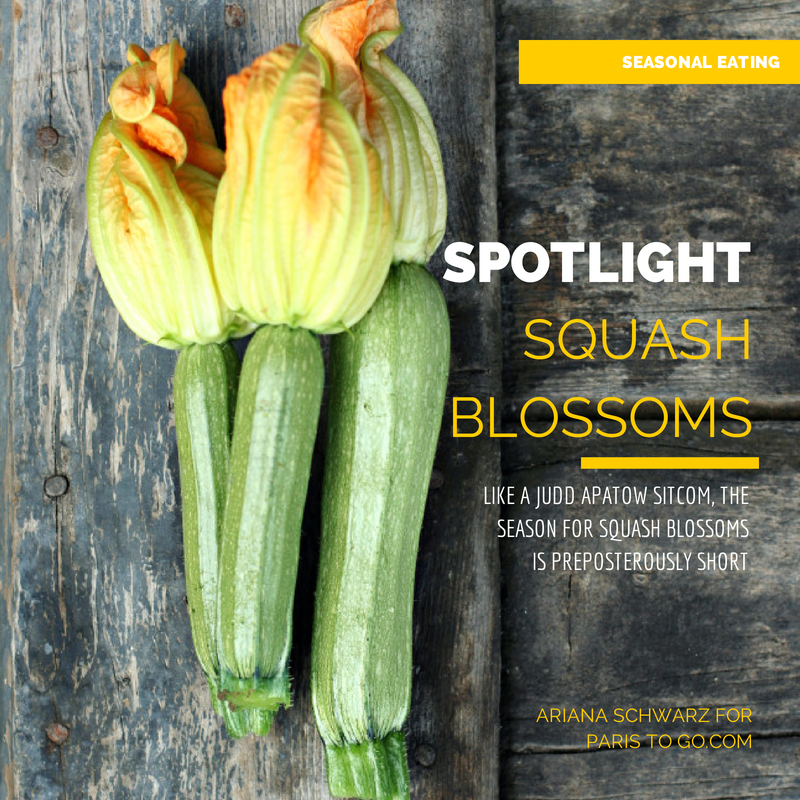 squash blossoms recipes cooking preparation how to choose use