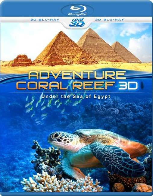 Adventure+Coral+Reef+Under+the+Sea+of+Egypt+(2012)+BluRay+Hnmovies