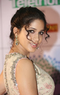 Lavanya Tripathi Latest Pictures in Long Dress at Memu Saitam Dinner with Stars Red Carpet ~ Bollywood and South Indian Cinema Actress Exclusive Picture Galleries