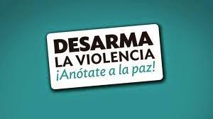 COLECTIVOS NO VIOLENTOS EN EL DEBATE SOBRE LA LOIVG