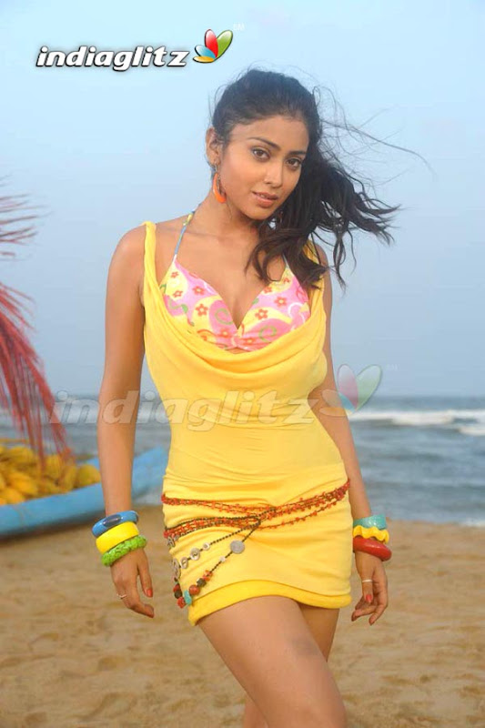 SHRIYA SARAN Hot Pose With Her Lovely Looks navel show