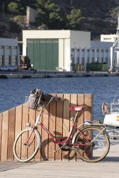 Clickea en la foto y verás un buen reportaje de la bici de TVE2