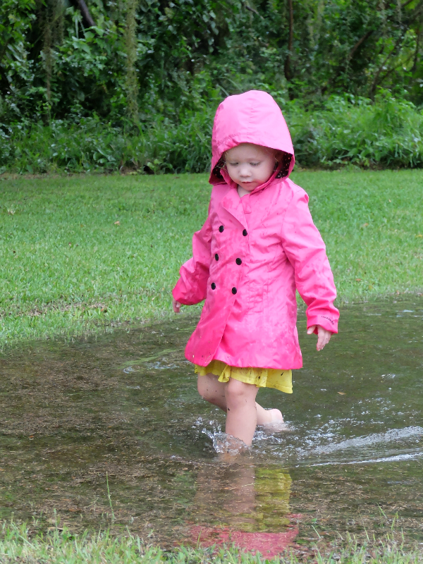 Sweet Turtle Soup - It's the Little Things: Puddle Splashing