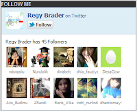 Cara Membuat Widget Follow Me Box Twitter di Blog