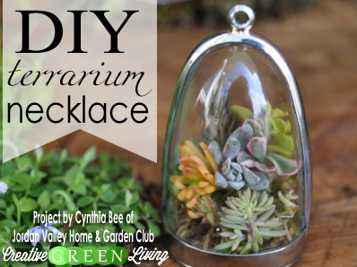 Make A DIY Living Terrarium Plant Necklace
